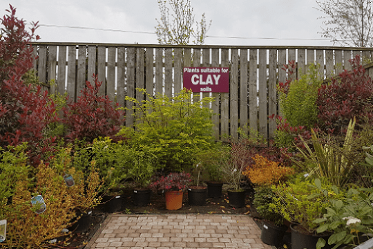 Wilkinsons Clay Garden Centre