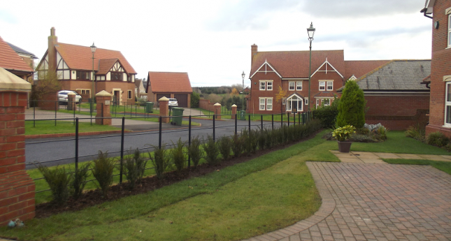 hedge-garden-and-paving