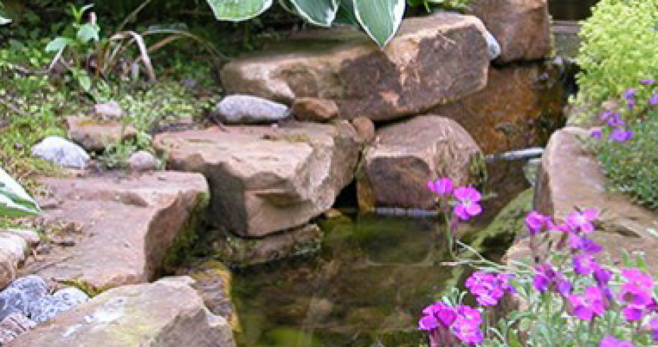 stone-border-and-pond