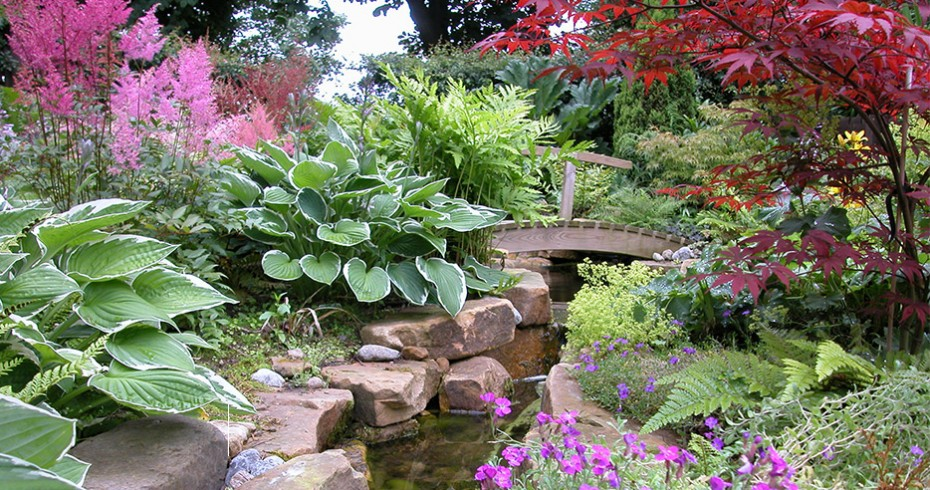 completed pond garden design