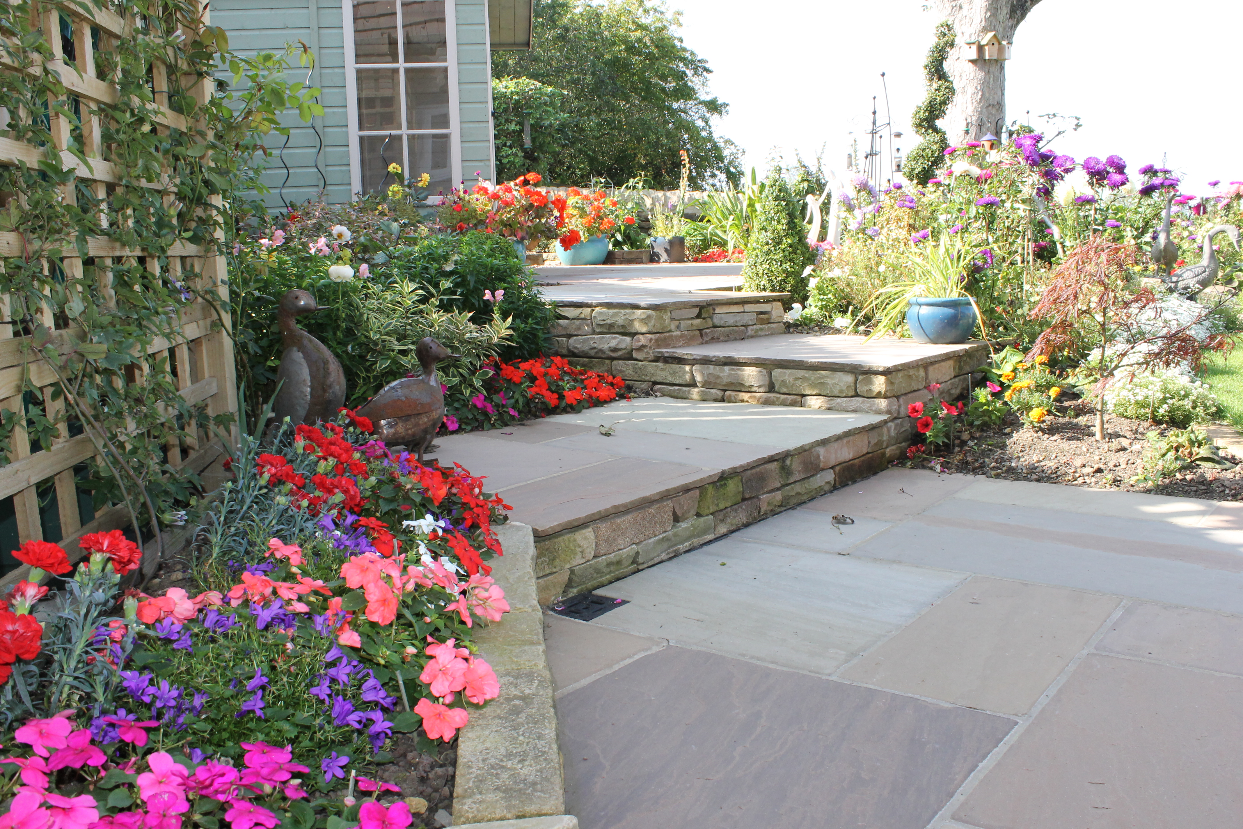 full view of garden project, bright coloured flowers